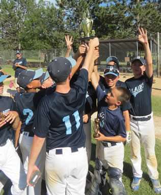 A group of young baseball players hoisting a trophy.