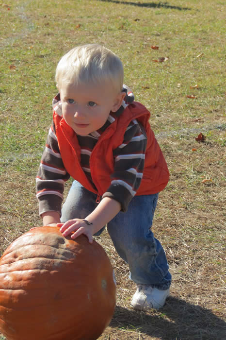 A young boy rolling a pumpkin.