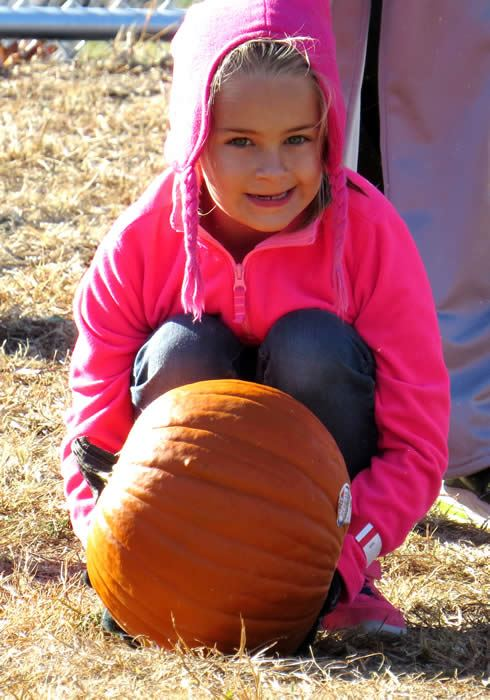 A girl in a pink coat pushing a pumpkin.