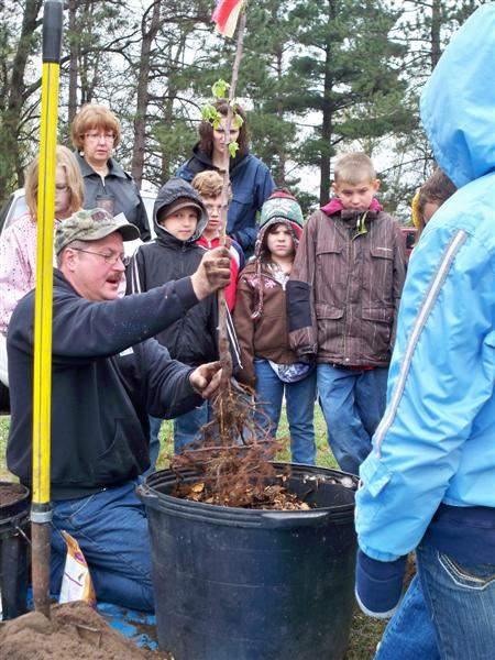 Park employee Bob Anderson plants a tree in Lum Park with area elementary students.