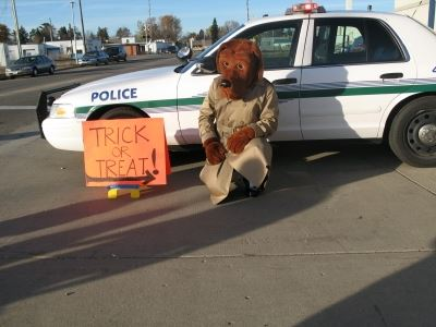 McGruff Posing Next to a Police Car